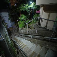 Garden Bridge, Aquarium, Tokyo, Stairs, Outdoor Structures, Japan, Landscape, Building, Photography