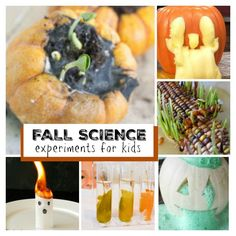 20 awesome Fall science experiments for kids- such neat ideas!