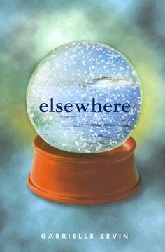 This is a really good book about a 15-year-old who dies and ends up in elsewhere. Teen Fiction