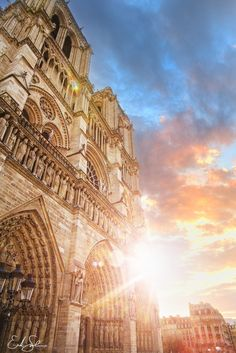 I caught this great sunset while walking back to my apartment from the train station. I thought, well...I am finally in Paris, and I haven't seen Notre Dame yet, might as well head there and see what all the fuss is about. Ended up with some perfect timing as the sun was riding down the side of the incredible structure. Just Magnificent.