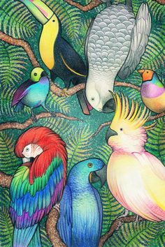 Parrots by ozaidesigns
