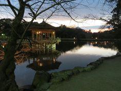 Nara koen, Japan   Un lindo atardecer
