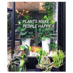 Plants Make People Happy! - The Sill Shop, 84 Hester Street, NYC