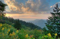 10 fatos claros sobre Great Smoky Mountains National Park | Floss Mental