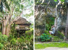 mafia island, chole island, treehouses, tanzania, forest, ruins, tyson jopson