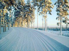 Suomalainen talvi tarjoaa mahtavia näkymiä! Tervareitistön lähtömaisemissa Rokualla oli eilen hiihtokelit kohdillaan! ❄ : @jseppanen  #matkallatervahiihtoon #tervahiihto2017 #tervahaaste #hiihto #kestävyysurheilu #talvi  #winter #crosscountryskiing #Rokua #RokuaGeopark #visitOulu #langrenn