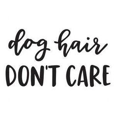 Dog Hair Don't Care Funny Vinyl Car Decal Bumper Window
