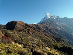 Mardi Himal Trek is one of the most magnificent trekking activities conducted in Annapurna region of the Himalayas at an altitude of 4200m lying on the bases of Mardi Himal (5500 m). Mardi Himal Trek package is one of the most challenging treks conducted in Nepal.