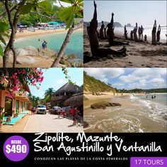 Costa, Mount Rushmore, Tours, Mountains, Travel, Crocodiles, Turtles, Oaxaca, Viajes