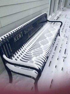 Regardez cette neige parfaite.