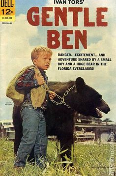 """GENTLE BEN, (TV Series Weaver told TV Guide in 1970 """"I liked him (Ben), but it was a cold relationship. Bears aren't like dogs and horses. Ben didn't know me from a bag of doughnuts."""" I LOVED this TV show! I don't remember the comic book, though. Tv Vintage, Vintage Comics, Easy Listening, Gentle Ben, Mejores Series Tv, Cinema Tv, Vintage Television, Old Shows, Great Tv Shows"""