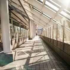 春みたいな陽射し でも風は冷たい(;; #横浜 #横浜駅東口 #そごうの外側  #午後 #陽射し #風冷たい #陽射しは暖かい  #空 #青空  #sky #afternoon #sunnyday #sunshine #japan #yokohama #building #bluesky  #winter #spring #landscape  #オズハマラブ