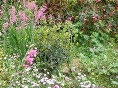 I need to do some weeding in my country garden, otherwise the weeds will take over!