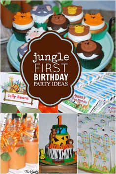 Does your son love animals?  Celebrate his first birthday by getting wild at a jungle safari party!
