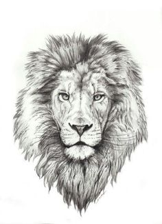 Best Lion Tattoo Collection - best tattoo - best tattoo for women - be Lion Head Tattoos, Mens Lion Tattoo, Leo Tattoos, Future Tattoos, Animal Tattoos, Body Art Tattoos, Tattoo Drawings, Tattos, Neck Tatto