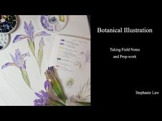 (84) Botanical Illustration - Watercolor Painting an Iris - Preview - YouTube