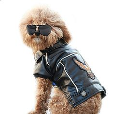 NACOCO Pu Leather Motorcycle Jacket Dog Clothes Pet Clothes Leather Jacket watherproof  Medium. More descripiton on the website.