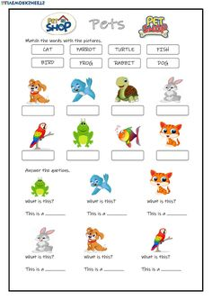Pets: online worksheet and pdf Animal Worksheets, Kids Math Worksheets, Preschool Learning Activities, Kids Learning, English Worksheets For Kids, English Activities, Pet Branding, Pet Sematary, Pet Shop Boys
