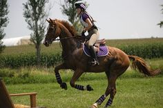 More corn, more cross-country, more fun at Catalpa Corner's Summer Horse Trials. Amelia Pfleger on Three Star General | Flickr - Photo Sharing!