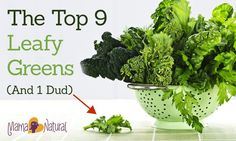 These top nine leafy greens are loaded with healthy vitamins and minerals. Find out which ones are great and one thats not so great in this post.