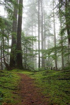 Bowen Island, British Columbia, Canada. And Im going here!
