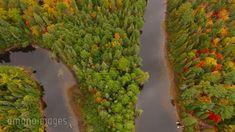 紅葉の森と川を真上から空撮[15206000028]の映像素材・動画素材。アマナイメージズでは、人物や風景、空撮など、フルHDの高品質で美しい映像素材を12万点以上販売。CMやテレビ番組などの映像制作のほか、WEBでの使用も可能です。
