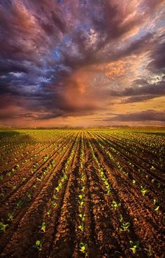 Best farm landscape photography fields heavens 30 ideas - Photography, Landscape photography, Photography tips Farm Photography, Landscape Photography Tips, Amazing Photography, Cool Landscapes, Beautiful Landscapes, Felder, Farm Life, Amazing Nature, Countryside