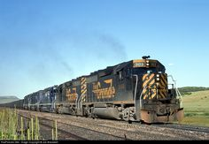 RailPictures.Net Photo: DRGW 3103 Denver & Rio Grande Western Railroad EMD GP40-2 at Spruce, Colorado by Joe Blackwell