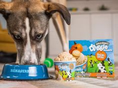 The new range is called Doggie Desserts, and is currently made up of two puddings for pups. The first flavour is Pontch's Mix; a frozen treat with peanut butter and pretzel swirls. The second is Rosie's Batch, which has a pumpkin flavour and mini cookies.
