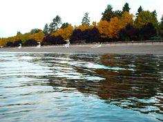 City Park & Beach Coeur d'Alene, ID