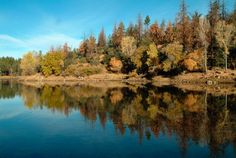 Prescott National Forest   Prescott National Forest
