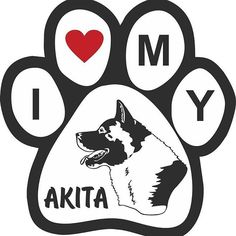 In Love with Akita