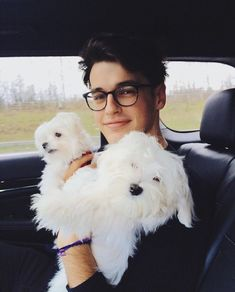 "Wow those ""puppies"" are so cute like omg those ""puppies"""