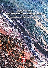 IL CIOTTOLO: Una musica scandita nel silenzio - Recensione di Fabio Amato