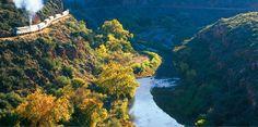Verde Canyon Train- a must for anyone visiting Arizona!