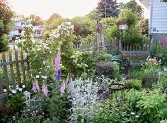 my garden in spring My House, Cottage, Outdoor Structures, Spring, Garden, Gardens, Accessories, Garten, Cottages