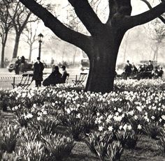 Hey, I found this really awesome Etsy listing at https://www.etsy.com/listing/192066635/vintage-london-photograph-of-hyde-park
