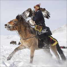 Galloping Eagle Hunter in Mongolia