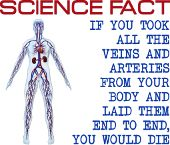 Science Fact If you took all the veins and arteries from your body and laid them end to end you would die funny geek nerd jokes humor shirts