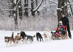 100 things to do in Wisconsin in the winter