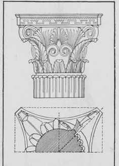 Greek Order Corinthian-multiple scrolls and leaves on the capital