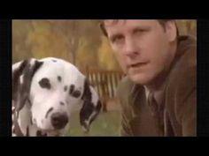 101 Dalmatians Movie 1996   full movie - YouTube