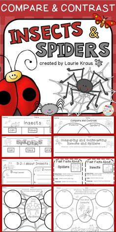 Are your students interested in learning about insects and spiders? What a wonderful way to teach the skill of comparing and contrasting! Your students will use this product to record the facts and information that they learn about insects and spiders. Use the internet and check out books from the library so your students can learn facts about these animals and then compare and contrast them.