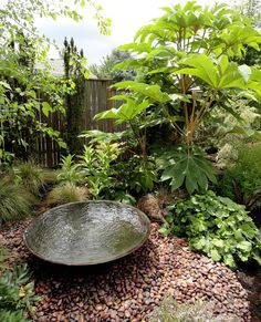 danger garden: More from the ANLD tour... I love this subtle water feature
