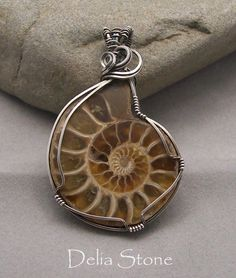 Ammonite Fossil in Antiqued Sterling Silver