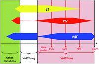 The spectrum of JAK2-positive myeloproliferative neoplasms