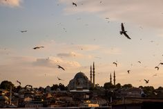Mesquita Süleymaniye (Some rights reserved by eder.fortunato) | Creative Commons License BY-SA 3.0  Like us on our Facebook page Ileftmyhear...