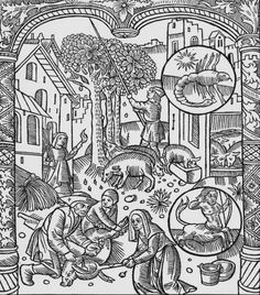 November, Killing The Pig And Harvesting Acorns, Scorpio, Illustration From The 'almanach Des Bergers', 1491 Giclee Print Poster by Pierre Le Rouge Online On Sale at Wall Art Store – Posters-Print.com