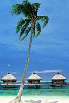 Moorea, French Polynesia...