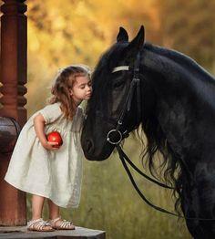 Cute Horses, Horse Love, Beautiful Horses, Animals Beautiful, Horse Girl Photography, Cute Kids Photography, Animal Photography, Animals For Kids, Cute Animals